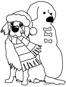 owhsnowdog