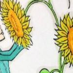 Sunflower Charlotte goes summer