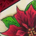 Poinsettias – already!