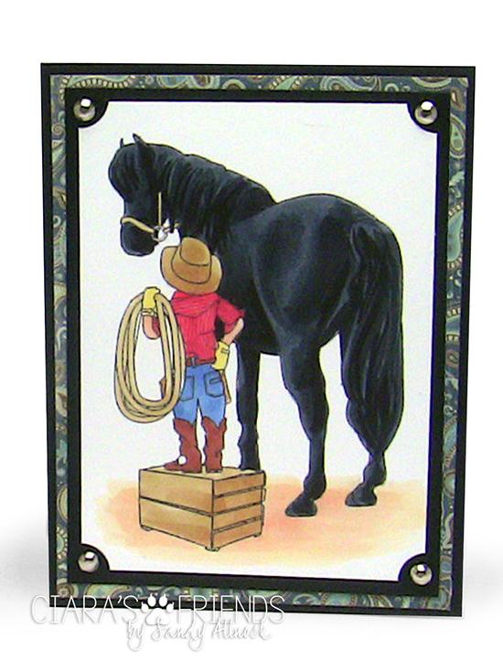 Sandy Allnock Black Horse-Trigger & Skyler