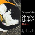 Magical Monday: Mannie the cat