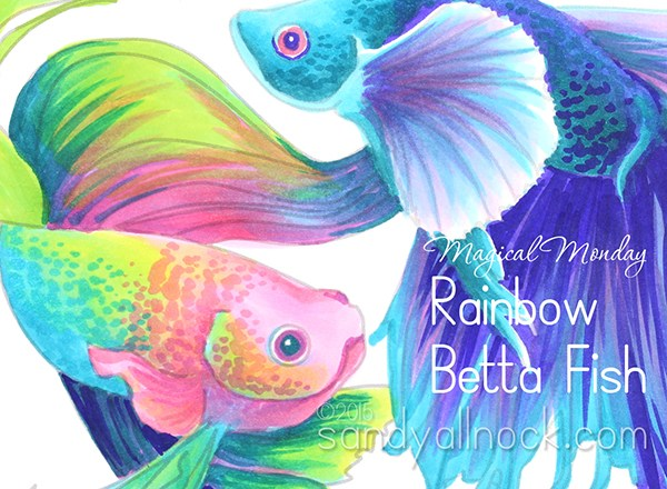 Magical Monday: Rainbow Betta Fish Drawing