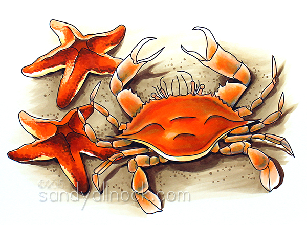 Sandy Allnock - Crab and Starfish Digital Stamp