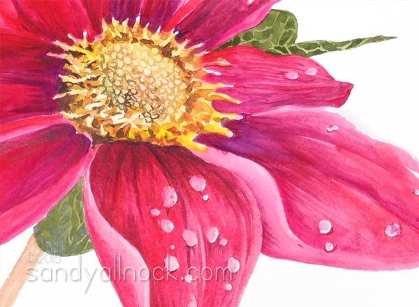 Sandy Allnock - Just One Petal - watercolor flowers series 6
