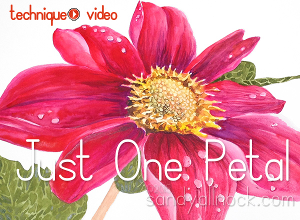Sandy Allnock - Just One Petal