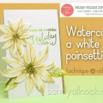 Watercolor Flower Series #11: Paint a white poinsettia