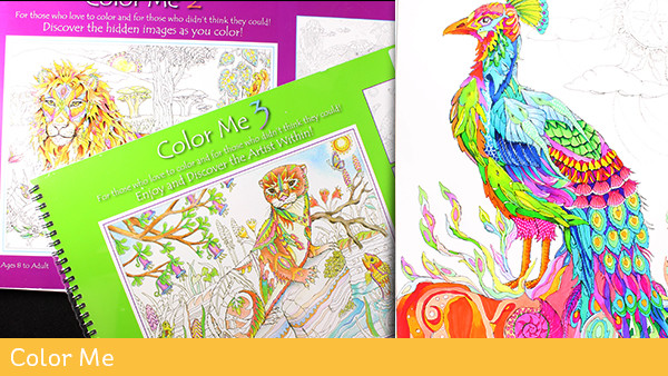 Artist and Adult Coloring Books – Sandy Allnock