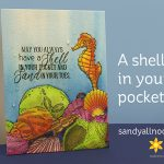 A shell in your pocket: Nicole Tamarin Seashells