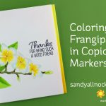Coloring Frangipani in Copic Markers