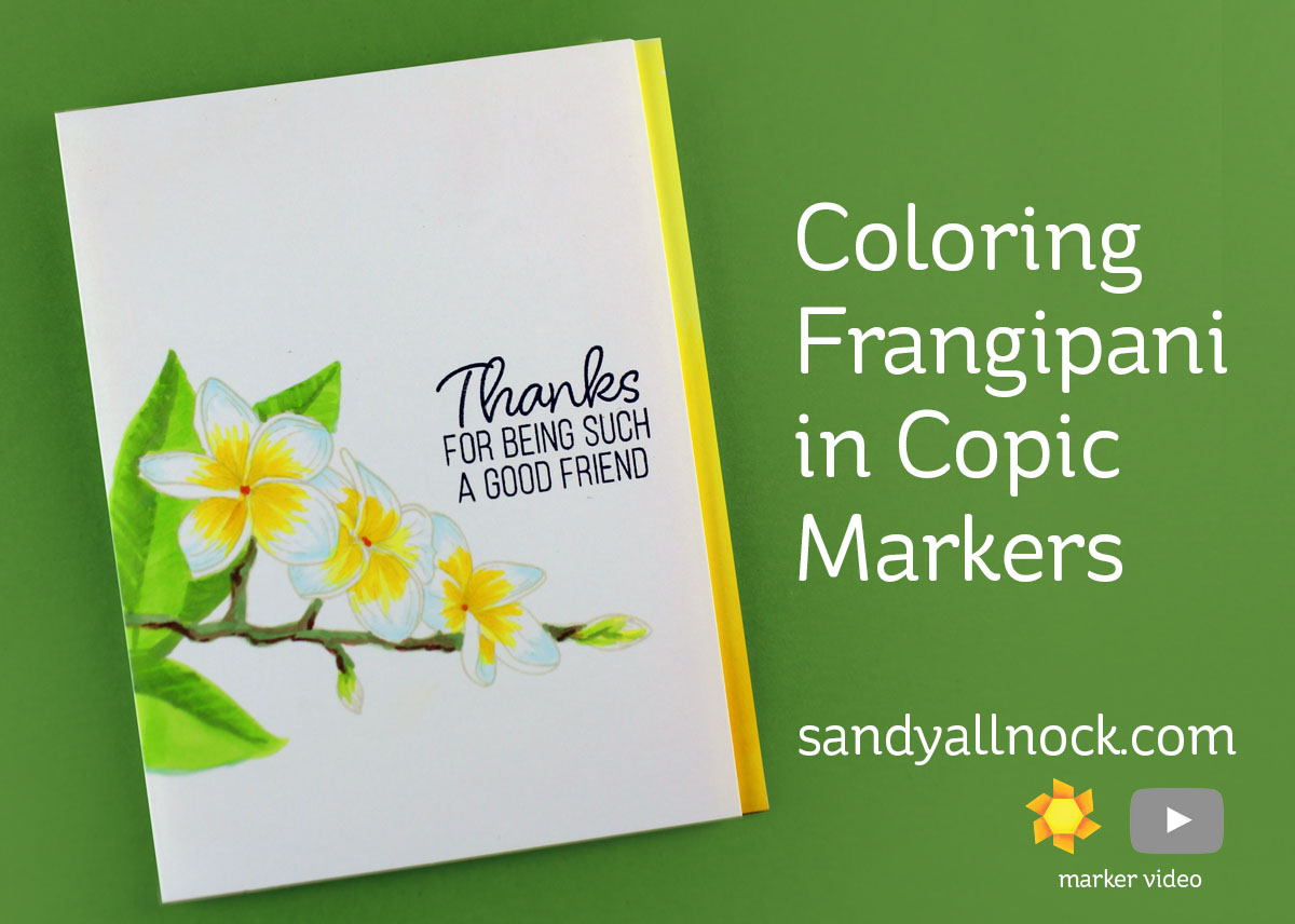 Coloring Frangipani in Copic Markers by Sandy Allnock