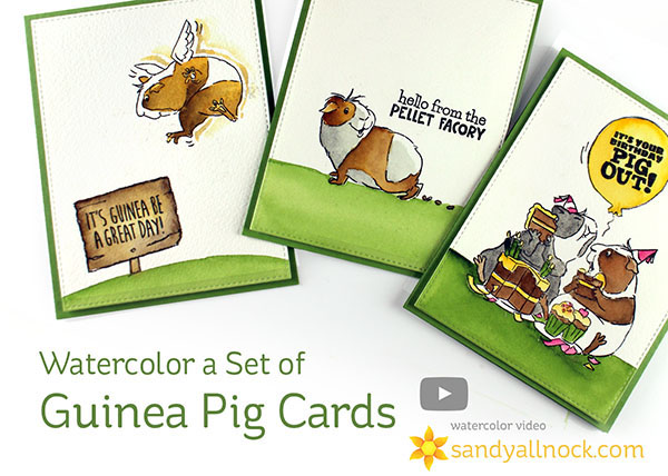 Watercolor a Set of Guinea Pig Cards