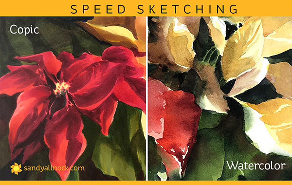 Poinsettia Speed Sketches