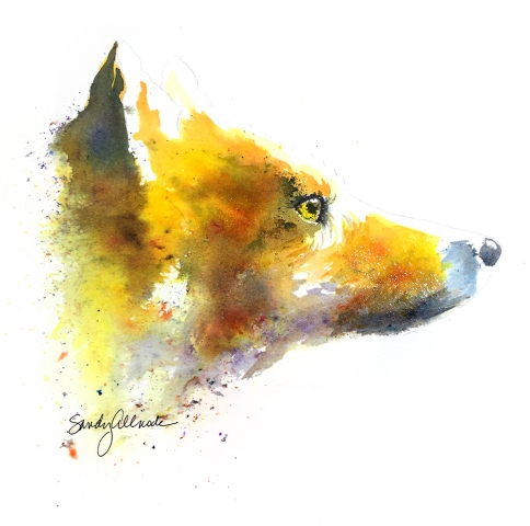 Red fox painting in brusho watercolor pigments by artist Sandy Allnock