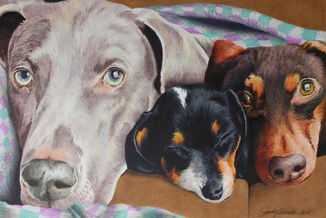 Three dogs drawn in Copic markers by artist Sandy Allnock