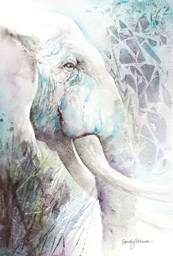 Textured watercolor painting of elephant head and tusks by artist Sandy Allnock