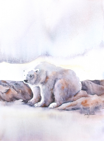 Watercolor painting of polar bear waiting for spring by artist Sandy Allnock