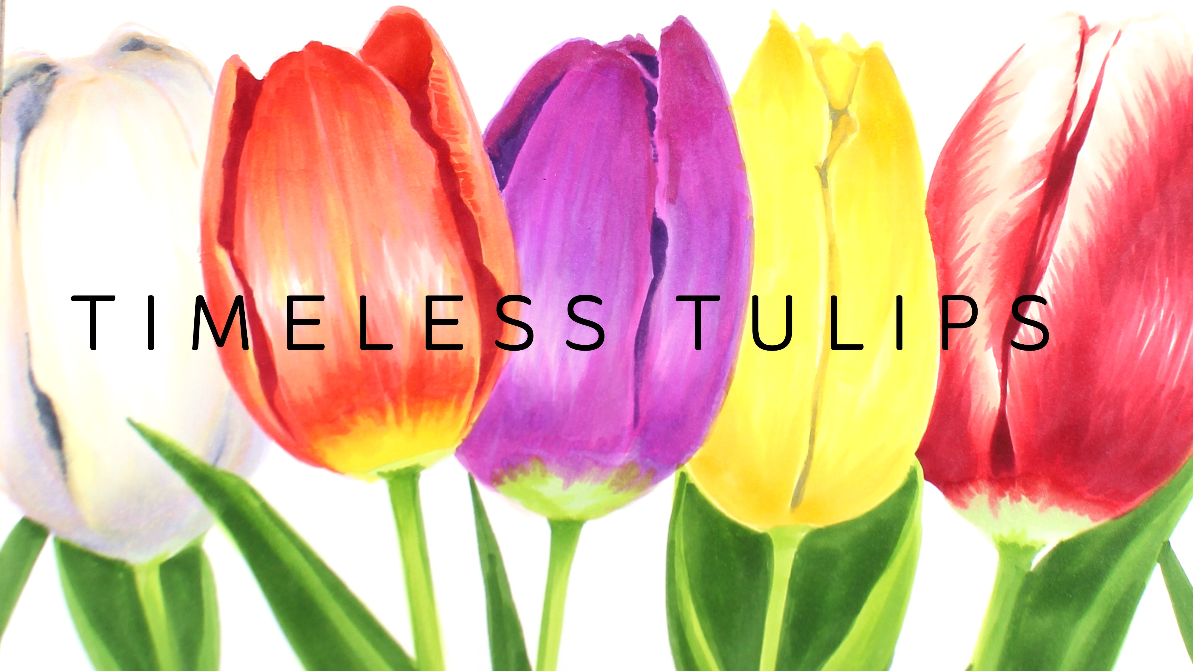 New Copic Class: Timeless Tulips