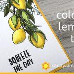 Color a Lemon Tree