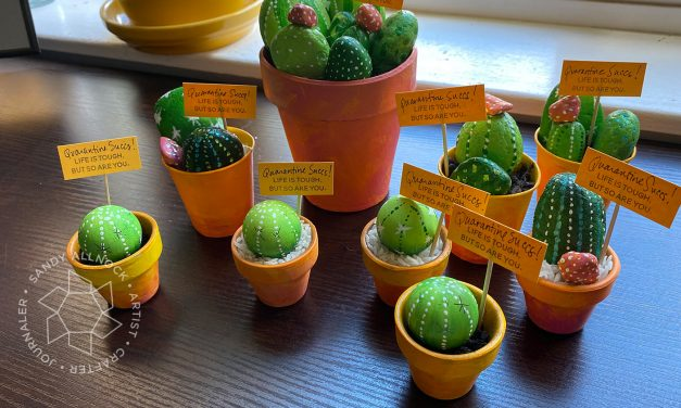 Quarantine Succs! (a crafty cactus gift to make!)